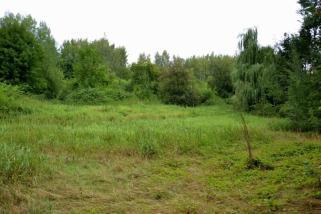 Přilehlou roklí protéká bezejmenný potok.
