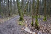 Bolevecký potok