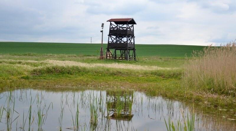 vyhlídková věž Nový rybník