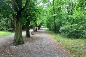 Borský park