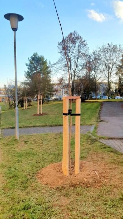 Zeleň v Plzni