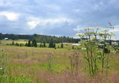 V Bavorském lese narůstá problém s nelegálně nocujícími turisty