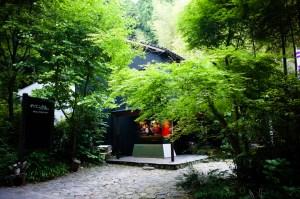 森の中のスタジオ