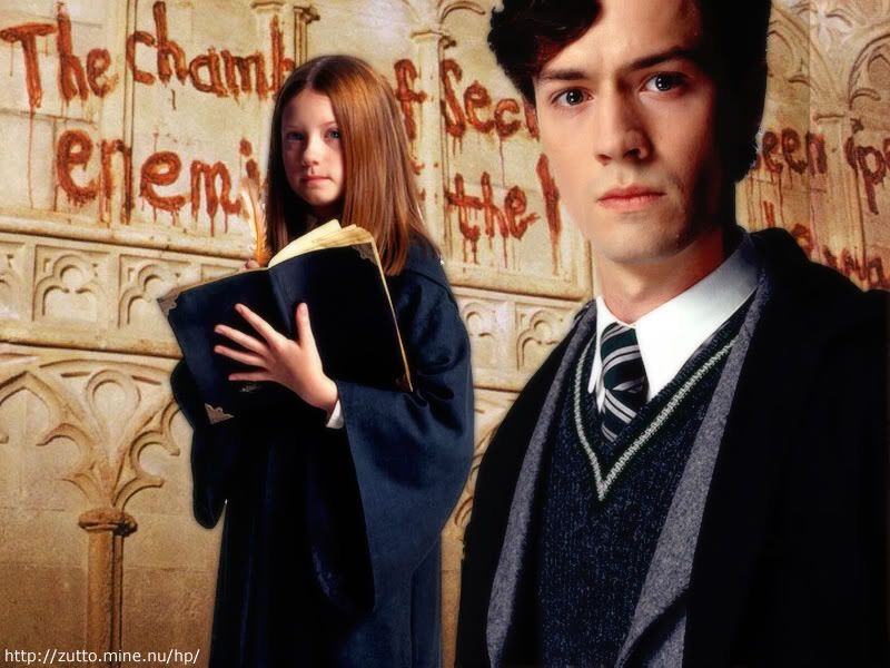 Image result for ginny weasley diary