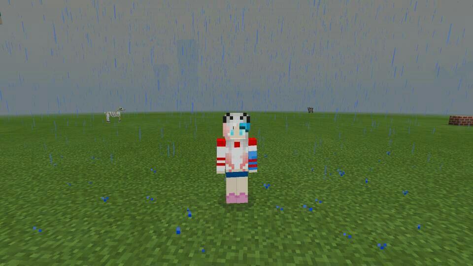 Suicidal Skin Minecraft