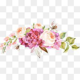 Flores PNG Wiki Editores Amino Amino