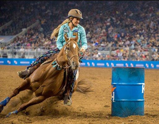 Fanta Wiki Equestrian Amino