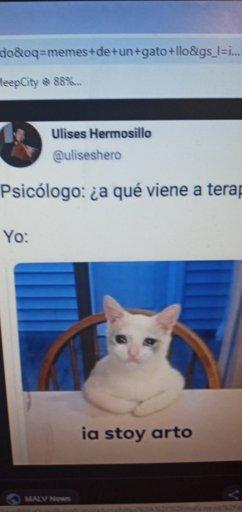 Tazas Memes Personalizables En Mercado Libre Mexico