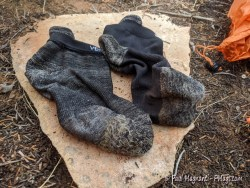Review: Ventury Silverlight Socks