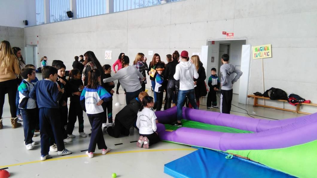 Feria interdisciplinar (19)