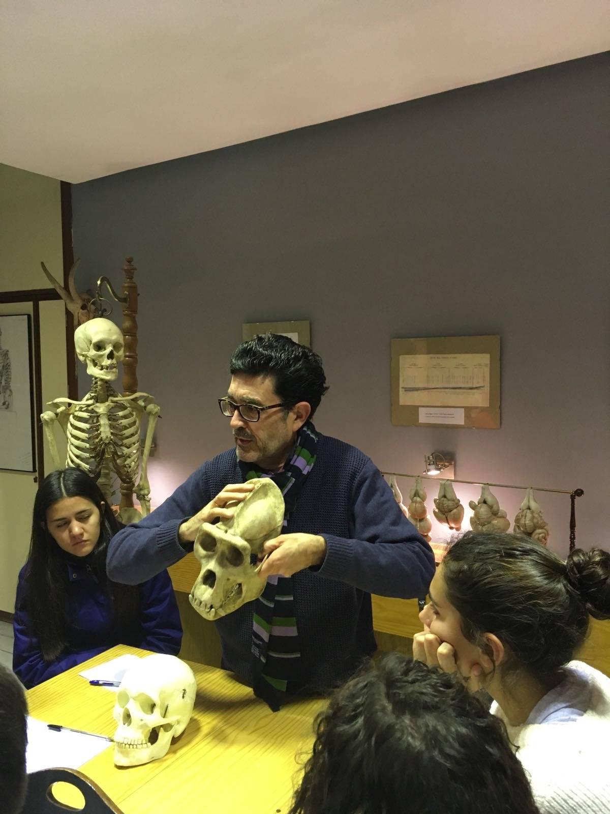 CLASE DE ANATOMÍA EN EL PADRE SUAREZ - Colegio Sagrada Familia ...