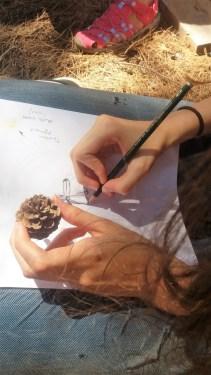 Prirodoslovno crtanje i izrada prirodnih pigmenata