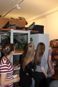 Tajne muzejske čuvaonice