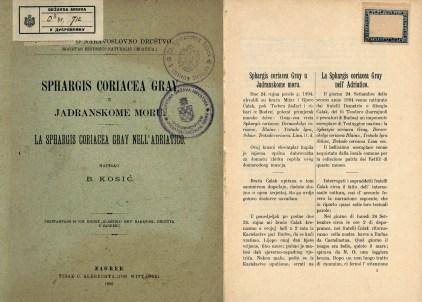 g-izlozba-Glede morske žabeZaboravljeni slučaj 1894-01