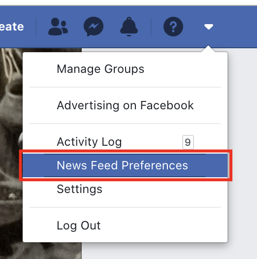 the news feed preference option