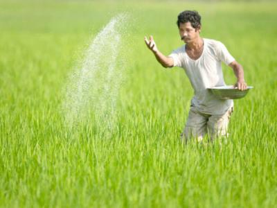 Direct Transfer of Fertilizer Subsidy