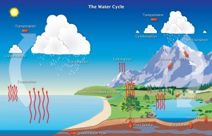 Hydrologic Cycle   Precipitation Education