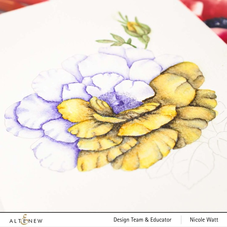 Watercolor painted floral from Altenew Watercolor Coloring Book by Nicole Watt