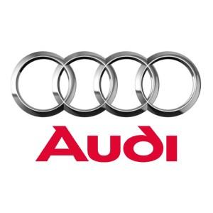 Задний амортизатор Audi A8 D3 4E (2003-2011)