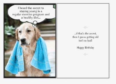 Happy Dog Png Images Transparent Happy Dog Image Download Pngitem