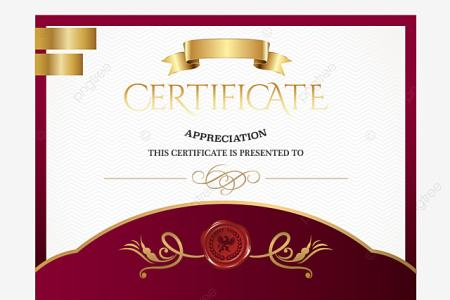 Certificate Border Png  Vectors  PSD  and Clipart for Free Download     cartoon certificate  Link  Stars  Skills Certificate PNG and Vector