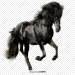 Riding A Horse Png Images Vector And Psd Files Free Download On Pngtree