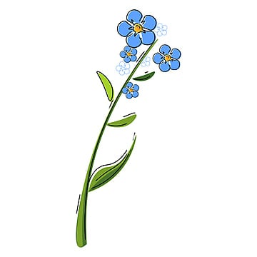 Forget Me Not Png Vector Psd And Clipart With Transparent Background For Free Download Pngtree