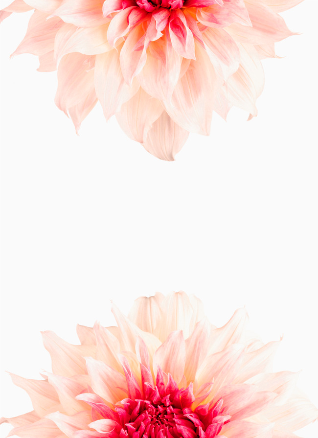 Watercolor Flowers Background Photos 681 Background