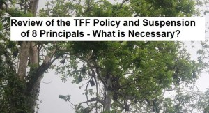 TFF Funds Review and Principals Suspension 2019