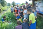 les enfants observent la pêche avec intérêt