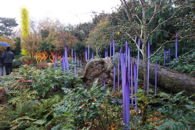 Garden at Chihuly Garden and Glass