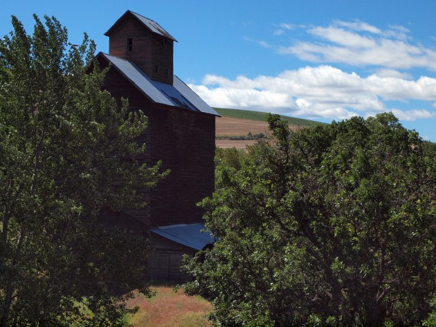 Boyd's old Grain Elevator