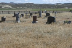 Westfall Cemetery email