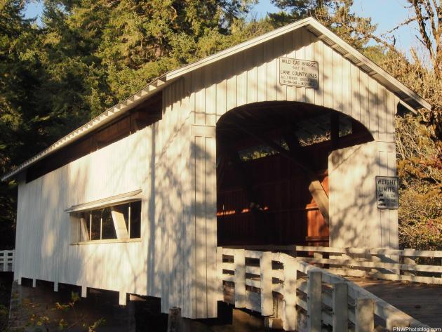 Wildcat Covered Bridge, Lane County, Oregon