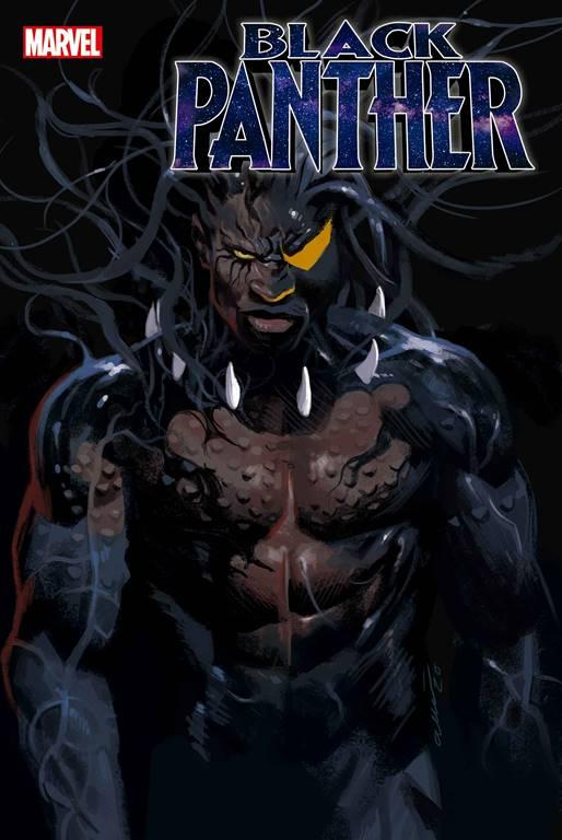 Black Panther #23 Cover