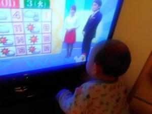 テレビに映るニワトリと格闘する赤ちゃん