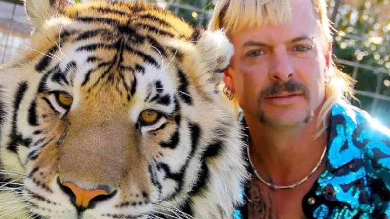 Review | A Máfia dos Tigres