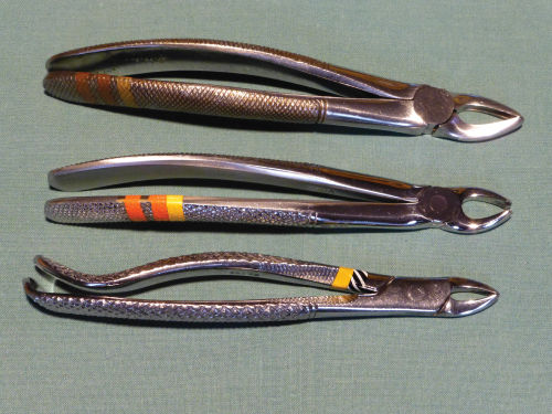 Photo of Upper permanent pre-molar/root extraction forceps.
