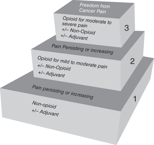 Illustration of The WHO pain relief ladder.