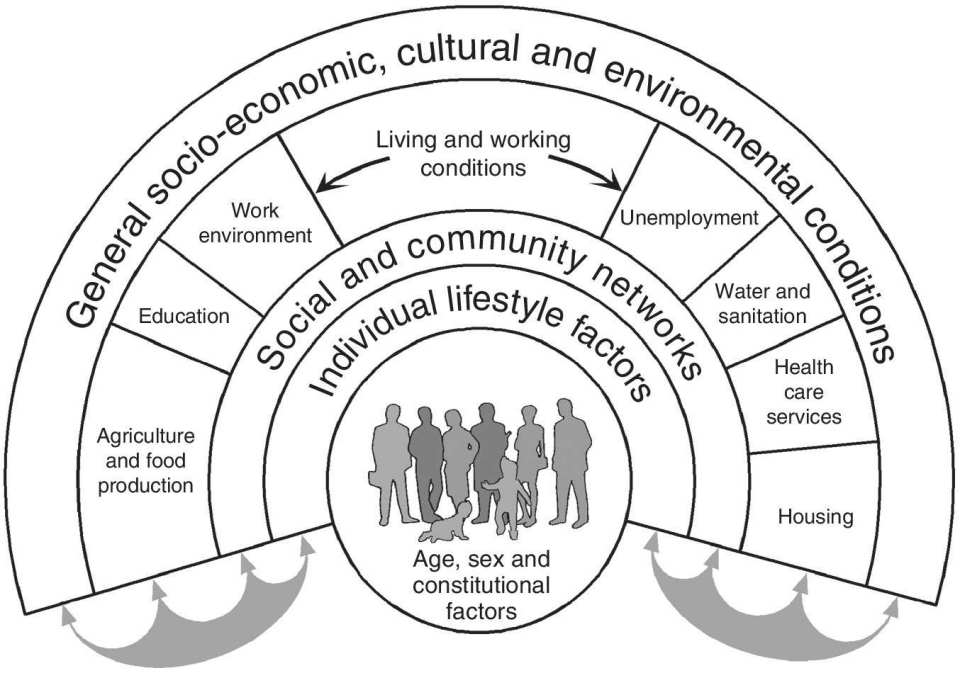 Diagram illustrating the social and community networks of the individual lifestyle of general socio-economic, cultural, and environmental conditions such as housing, education, and health care services.