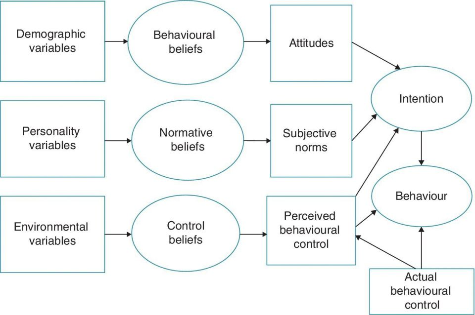 Flow diagram of the theory of planned behavior from demographic, personality, and environmental variables, to behavioral, normative, control beliefs, to attitudes, subjective norms, and behavioral control.