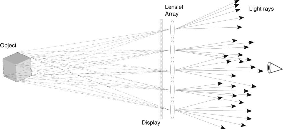 ../images/435642_1_En_16_Chapter/435642_1_En_16_Fig2_HTML.jpg