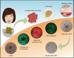 Reactions for the Treatment of Oral-Facial Lesions and Microbiological Control