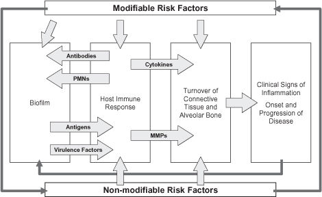 3 Periodontal Risk Factors And Modification Pocket