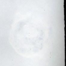 CUPFUL paper detail