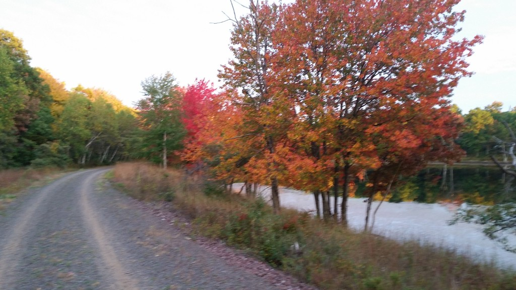 Glen Summit - D & L Black Diamond Rail Trail Fall Foliage Poconos - Pocono Bike Rental