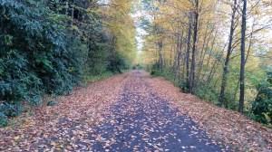 Poconos Rail Trail