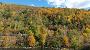 Poconos Fall Foliage Jim Thorpe