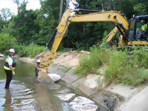Poconos Wetland Remediation 2