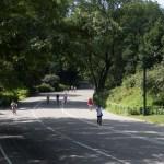 Central Park - Początkujący Fotograf